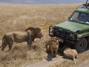 9-tage-kenia-rundreise